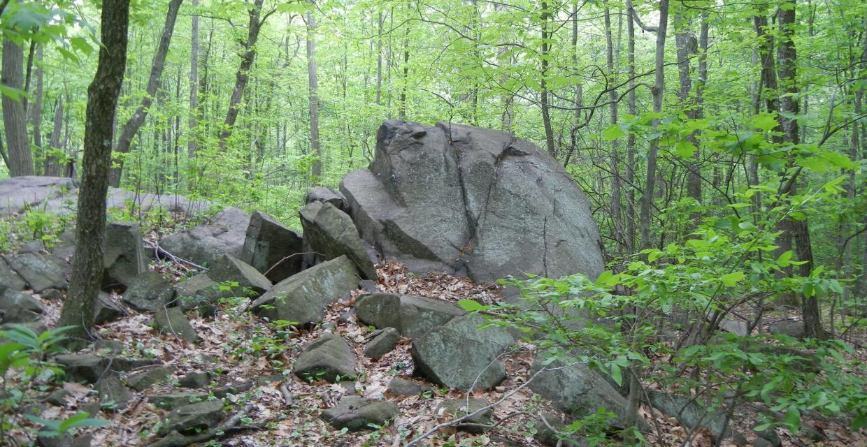 Large Rock Den - Tenafly Nature Center - Photo credit: Trail Conference
