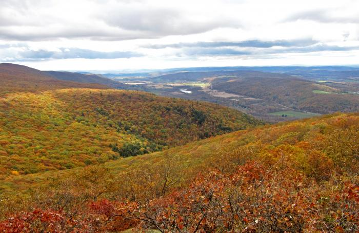 View from the South Taconic Trail on Alander Mountain at Taconic State Park - Photo credit: Michael Schenker