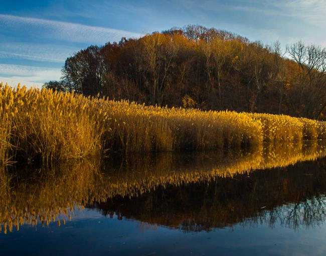 View from the Long Path in Rockland County. Piermont Marsh in Tallman State Park. Photo by Steve Aaron.